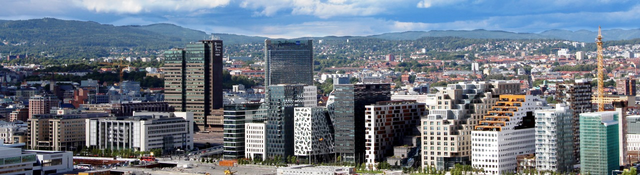 Oslo a norvég kultúra legfontosabb intézményeinek városa. Ha itt jár, szerezzen be egy Oslo Pass bérletet, és járja körbe a város nevezetességeit a Vigeland szoborparktól kezdve, a hajómúzeumokon át, az új Nobel békeközpontig. A város rengeteg parkjában sétálva ne hagyja ki a Karl Johans gate-et, Oslo bevásárlóutcáját. A természet szerelmesei biztos, hogy otthon fogják itt érezni magukat, hiszen a város mintegy kétharmadát vadregényes erdők és tavak teszik ki. Oslo egyik különlegessége, főleg télen, a vad jávorszarvasok megjelenése akár a városban is.